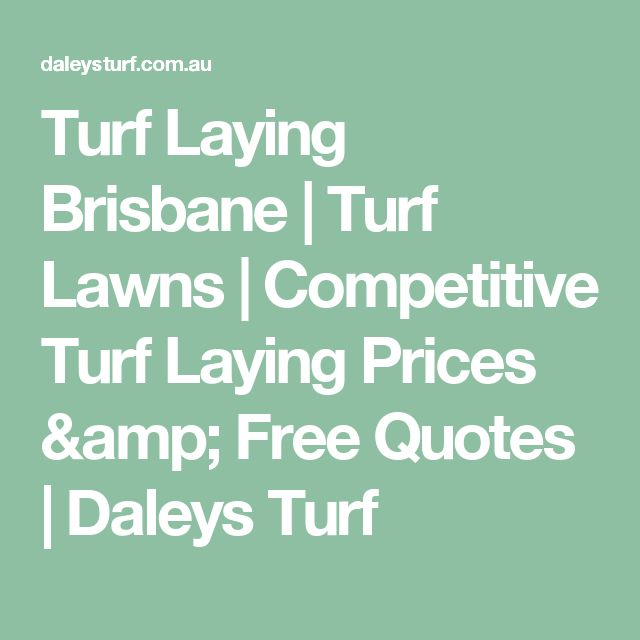 Turf Laying Brisbane | Turf Lawns | Competitive Turf Laying Prices & Free Quotes | Daleys Turf
