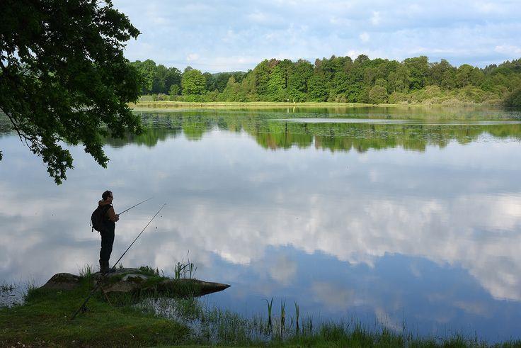 La pêche est ouverte, réservez vite votre gîte de pêche... Choisir la Creuse si vous êtes amateur de pêche, c'est avoir raison sur toute la ligne ! Pêche en rivière, pêche en étang, pêche à la mouche, au coup et même au tenkara... ici, il y en a pour tous les goûts !  Votre gîte de pêche en bord de rivière Venez séjourner en famille dans un ancien moulin rénové, très bien situé au pied de la rivière La Creuse, véritable paradis pour les pêcheurs. Venez taquinez le poisson : truites, gard...