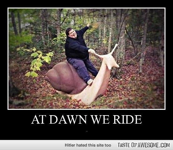 At dawn we ride | Laugh out Loud | Pinterest