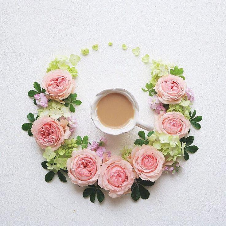 roses named Tea partyHave a wonderful weekend . ティーパーティーという名前のバラたちです素敵な週末になりますように . . .