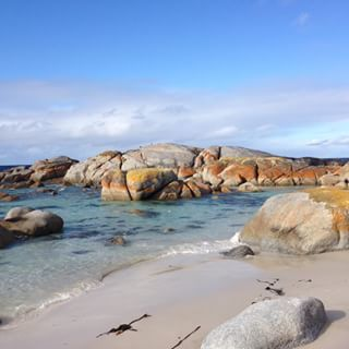 It has the white sand.   26 Beautiful Reasons Tasmania Is One Of The Best Islands In The World