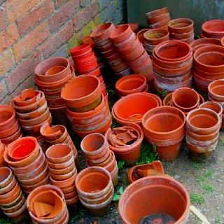 Plant pots at National Trust house