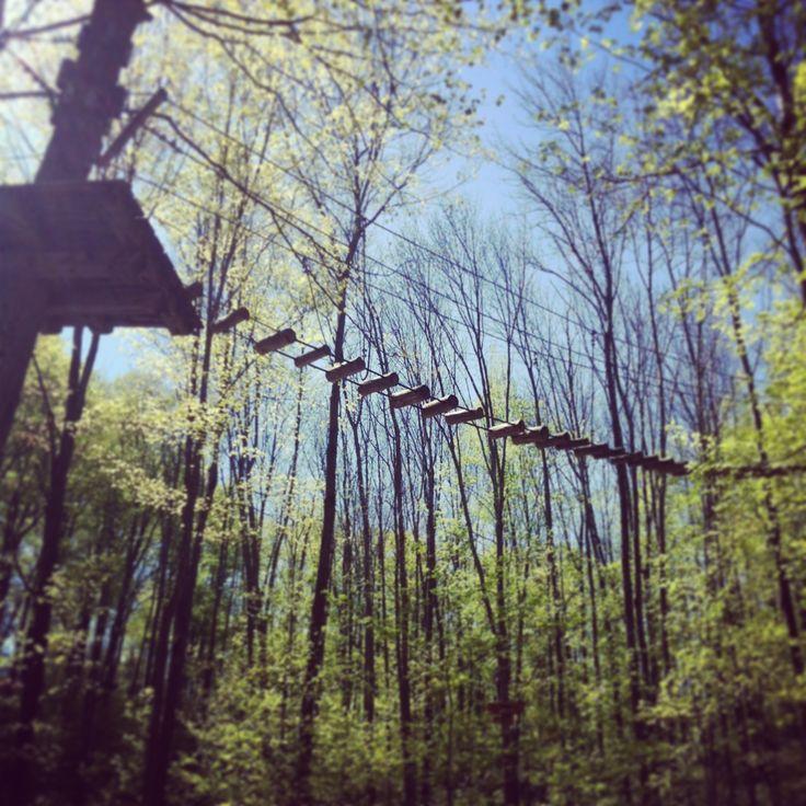 Tree-top trekking at Horseshoe Valley Resort, Ontario
