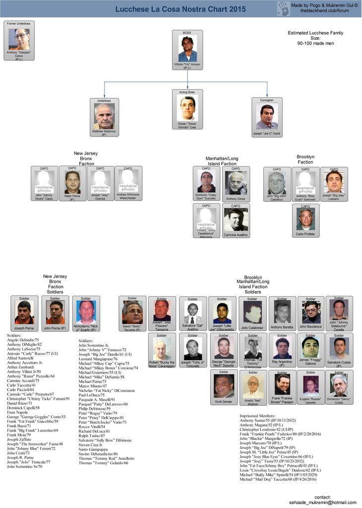 2015 chart charts pinterest mafia mafia families and mafia crime