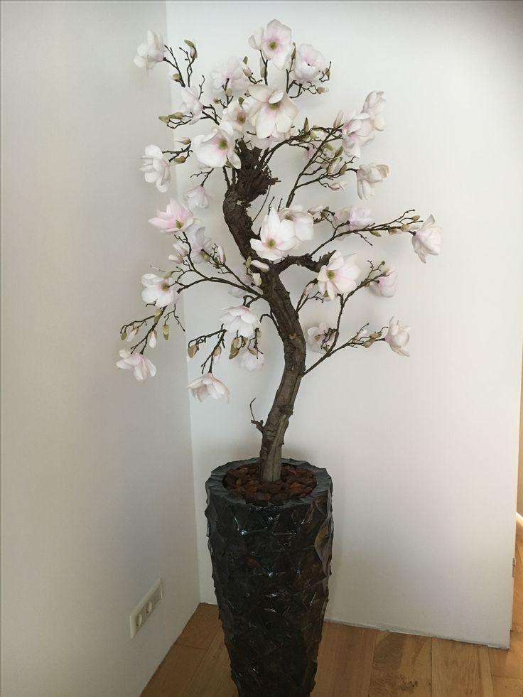 """Deze magnoliaboom hebben we mogen bezorgen bij een mannelijke klant met smaak! Zijn keus voor """" the mother of pearl """" pot bewijst dit maar weer. Stijlvol natuurlijk."""