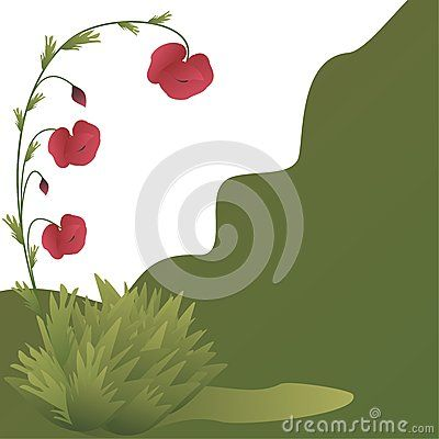 Green card with poppy flowers and grass