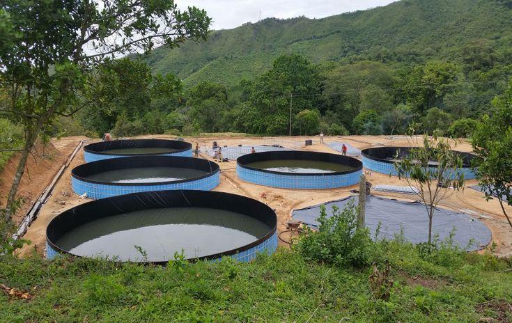 Proyecto llevado a cabo en el 2016, fue desarrollado en zona rural de Ibague en la vereda el Totumo.