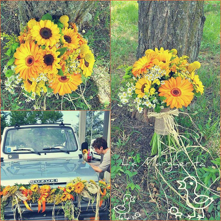 Sunflowers. summer Flowers La Margherita