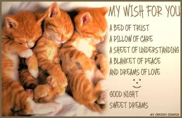 Good night via My Cheery Corner page on Facebook