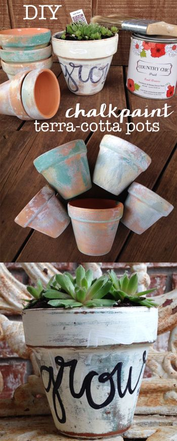 Learn how to simple it is to create fun succulent terra cotta pot projects with chalk paint. Country Chic paint. Chalk paint project. Succulent pots. Succulent plant. Distressed pot. Antiqued pot. Faux antiquing planters. Easy gift ideas. How to use chalk paint. Chalk paint tutorial. Pinterest party ideas.