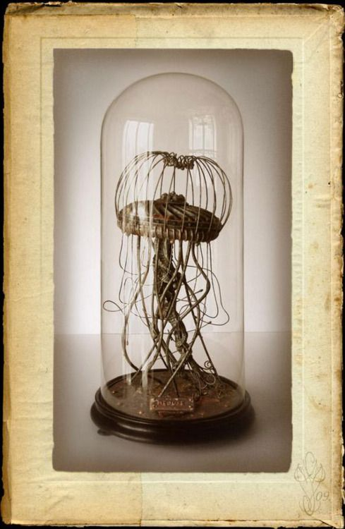 bell jar   steam punk jellyfish