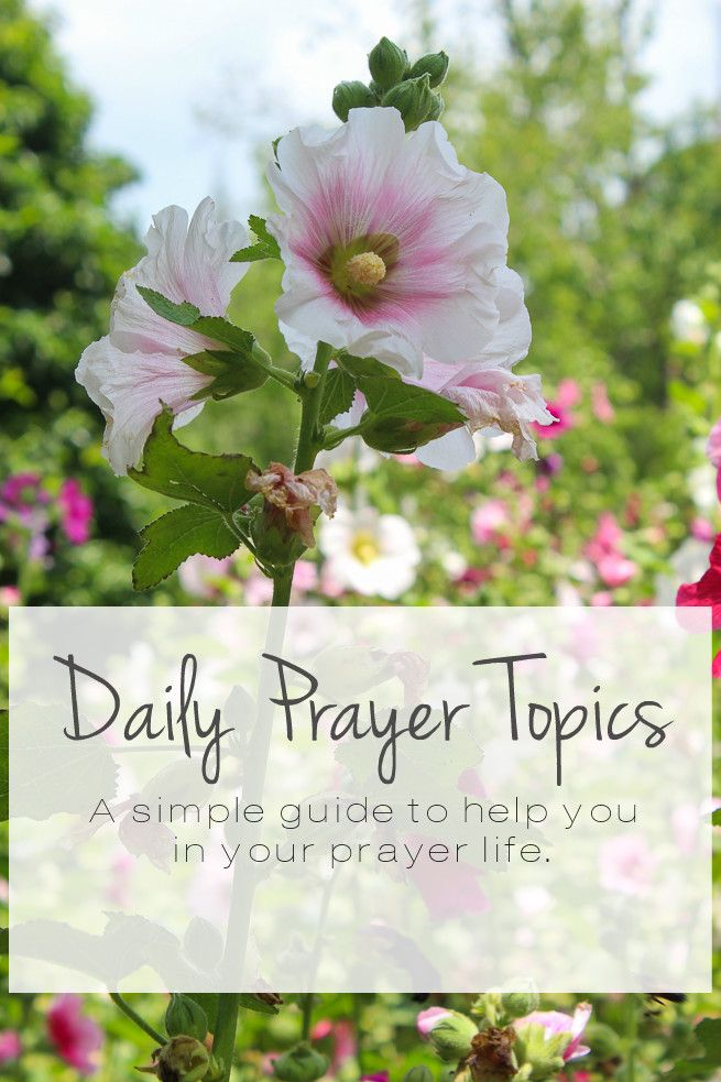 Daily Prayer Topics + What I've Learned This Past Year About Prayer