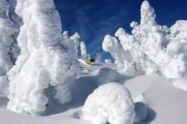 Vancouver Island's Mount Washington  #ski #paradise
