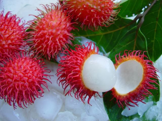 Rambutan Fruit- Caribfruits - Ramboutan / Fruits des Antilles On en trouve beaucoup au Cambodge, Vietnam et Thaïlande