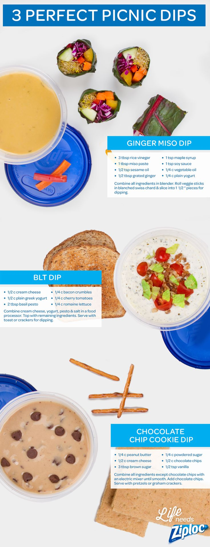 These fun picnic ideas turn your favorite summer recipes into finger food. Ginger miso dip is great with salad roll-ups. Serve BLT dip with toast or crackers. Chocolate chip cookie dip with a yummy peanut butter twist tastes great with graham crackers or pretzels. Taking these easy homemade dips to go in a Ziploc® container is a less messy way to picnic for kids or couples. They're also a creative way to take an appetizer, sandwich or dessert to a Fourth of July or Memorial Day party.