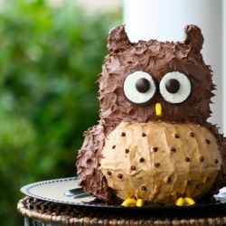 This cute owl cake would be excellent for a birthday party and is simple enough for beginners to make.