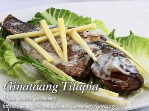 1000 images about filipino fish recipes on pinterest for Fish recipe panlasang pinoy
