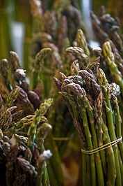 HOW TO PLANT ASPARAGUS High in nutrition, asparagus is a good source of vitamins A and C as well as protein, calcium, folic acid and iron. Once established, this perennial vegetable plant produces tender asparagus spears every spring for 12 to 25 years. http://www.wikihow.com/Plant-Asparagus