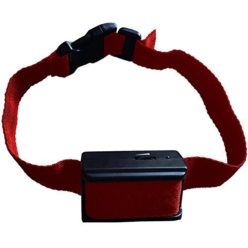 pet safe dog collar instructions