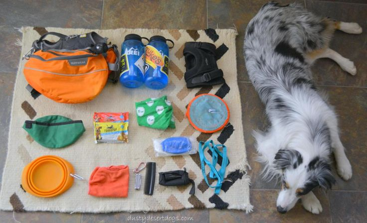 Dog Hiking Gear. Dog hiking backpack, bandana, collapsible bowl, food, water, extra leash.