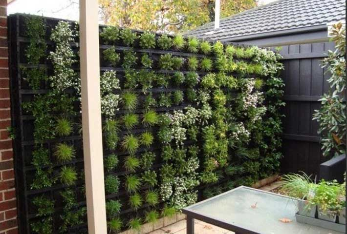 vertical succulent and ivy wall - use to cover up under the porch (deck skirting)
