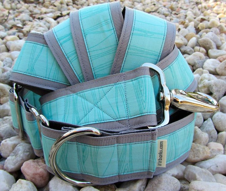 Layered Natural Lines Aqua Martingale Dog Collar and Leash | If It Barks
