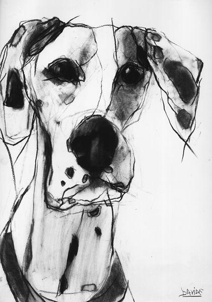 Valerie Davide | great dane drawing