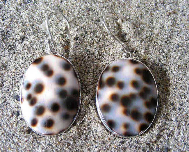 925 Silver Shell Earrings | Go On - Treat Yourself