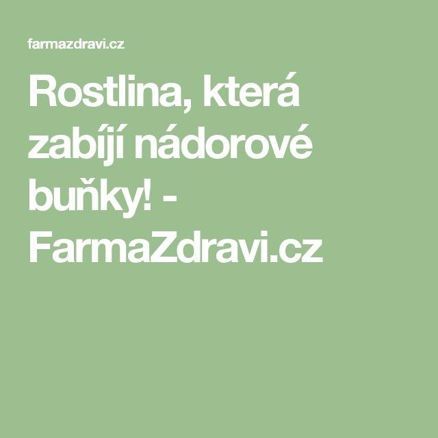 Rostlina, která zabíjí nádorové buňky! - FarmaZdravi.cz
