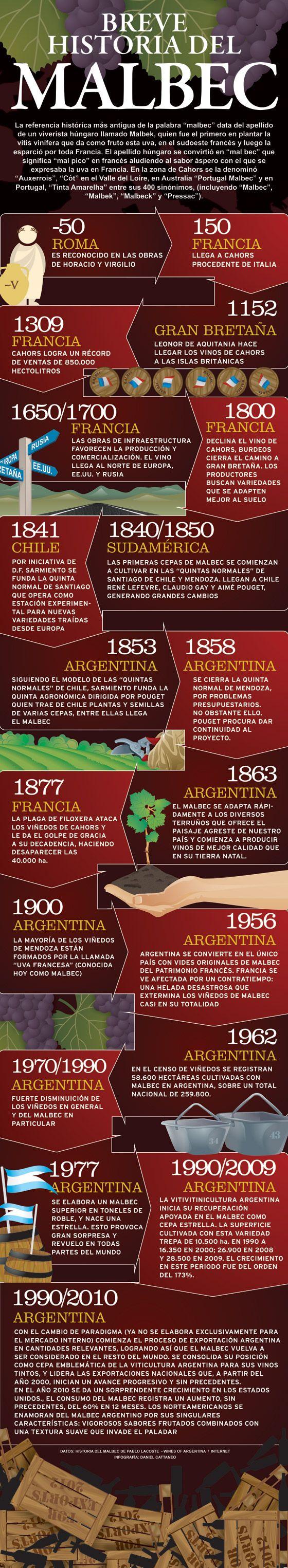 Breve historia del Malbec « Winesur