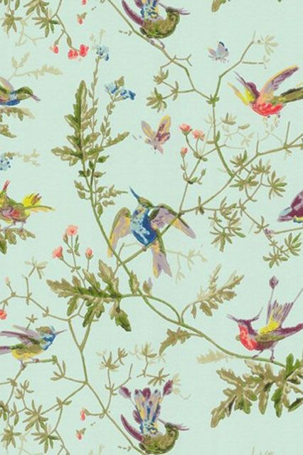 25 best ideas about bird wallpaper on pinterest powder for Designer wallpaper mural