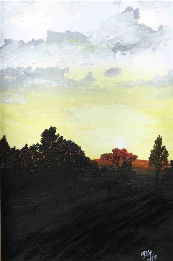 Dawn outside Winburg - Joanne@Butterfly Art.