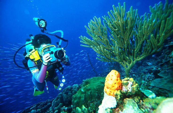Scuba diving at Mani peninsula