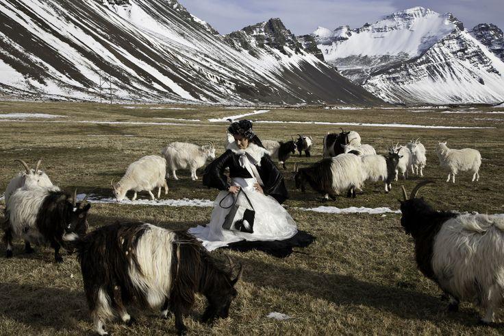 #arfleifd #fashion #Iceland #Djúpivogur #fishskin #reindeer #leather #nordicfashion #naturalfashion #sustainability #cittaslow #slowfashion