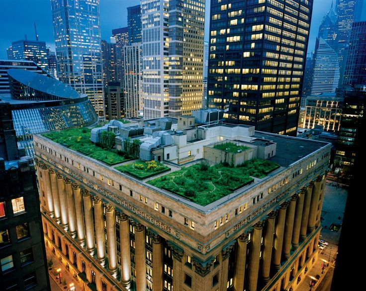 Picture of a green roof on Chicago's City Hall