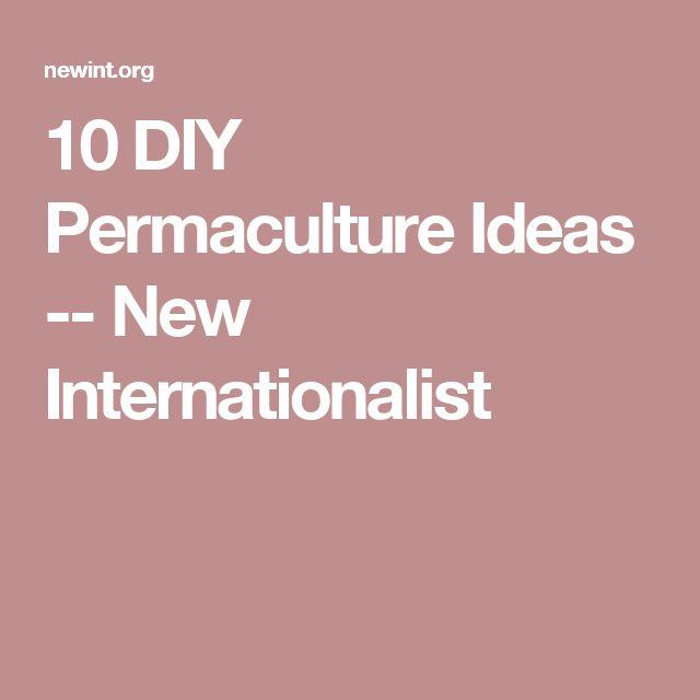 10 DIY Permaculture Ideas -- New Internationalist