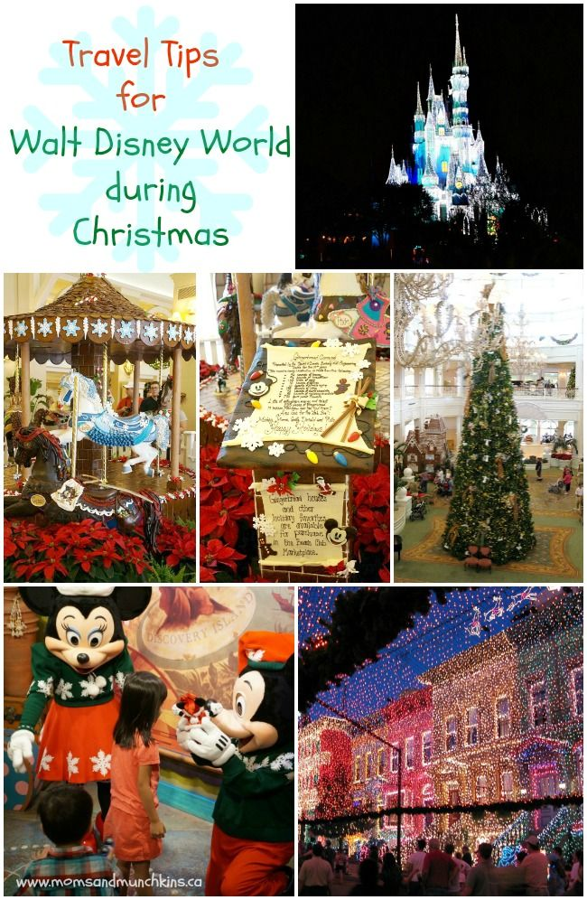 Travel Tips For Walt Disney World During Christmas - a family travel adventure!