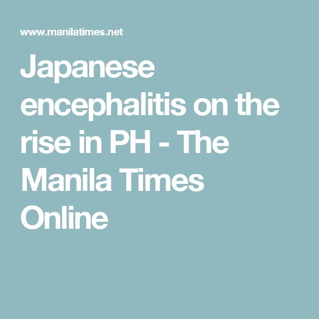 Japanese encephalitis on the rise in PH - The Manila Times Online