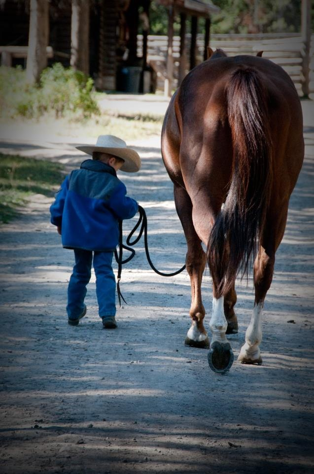 God bless perfect babysitter horses and the hearts of the little cowboys that love 'em.