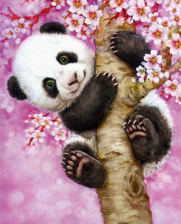 Panda and Pink Blossoms KAYOMI HARAI ART