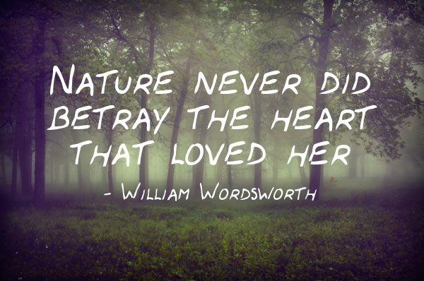 """Nature never did betray the heart that loved her"" -William Wordsworth  Quote from Tintern Abbey poem 1798."