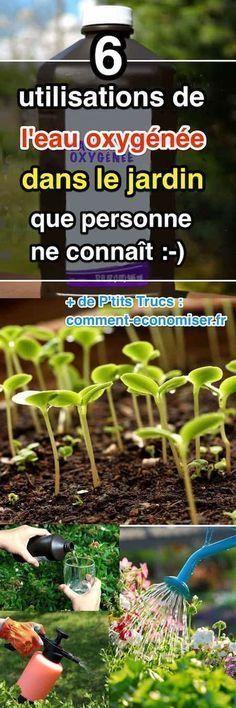 Habituellement, on utilise l'eau oxygénée pour le nettoyage, blanchir le linge, la stérilisation, ou la désinfection, mais l'eau oxygénée peut aussi être utilisée en horticulture. La raison est simple, l'eau oxygénée à 3 % agit comme un supplément d'oxygène pour les plantes.  Découvrez l'astuce ici : http://www.comment-economiser.fr/6-utilisations-de-l-eau-oxygenee-dans-le-jardin.html?utm_content=bufferf111e&utm_medium=social&utm_source=pinterest.com&utm_campaign=buffer