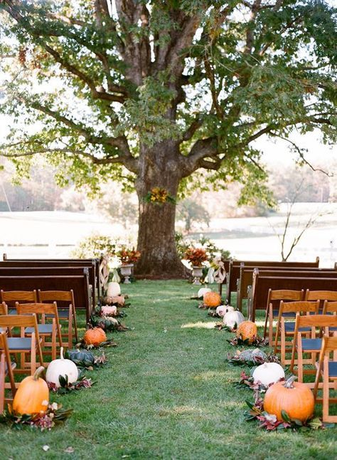 gorgeous pumpkin lined fall wedding aisle / http://www.himisspuff.com/fall-pumpkins-wedding-decor-ideas/5/