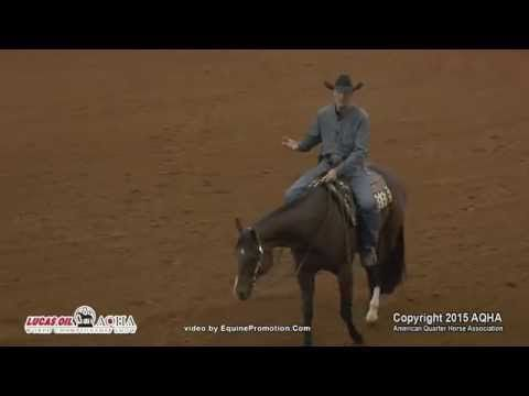Gil Galyean Shows Us How Western Pleasure Horses SHOULD Be Going – The Future Of The Sport! – The Horseaholic