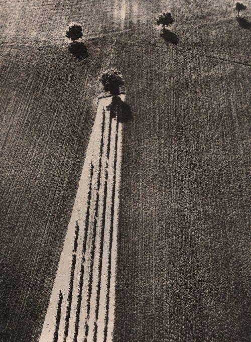 vivipiuomeno: Mario Giacomelli, 1979, landscape, italy