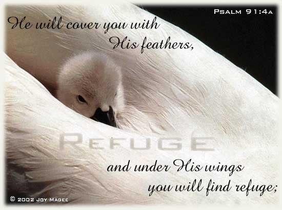 psalm images | Psalm 91 (New International Version)