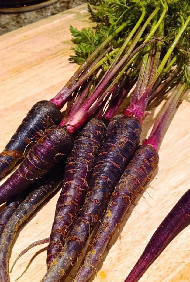 India Black Carrot   Unusual Vegetables You've Probably Never Seen Or Heard Of
