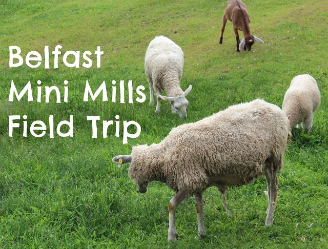Life on a Canadian Island: Belfast Mini Mills Field Trip