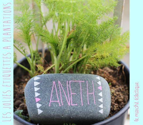 etiquettes à plantations plants tags