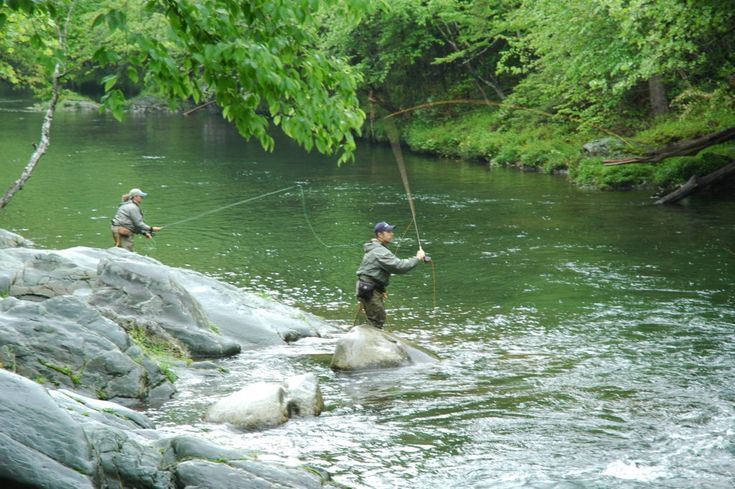Fishing in Cades Cove